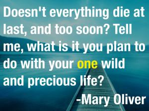 mary oliver precious life